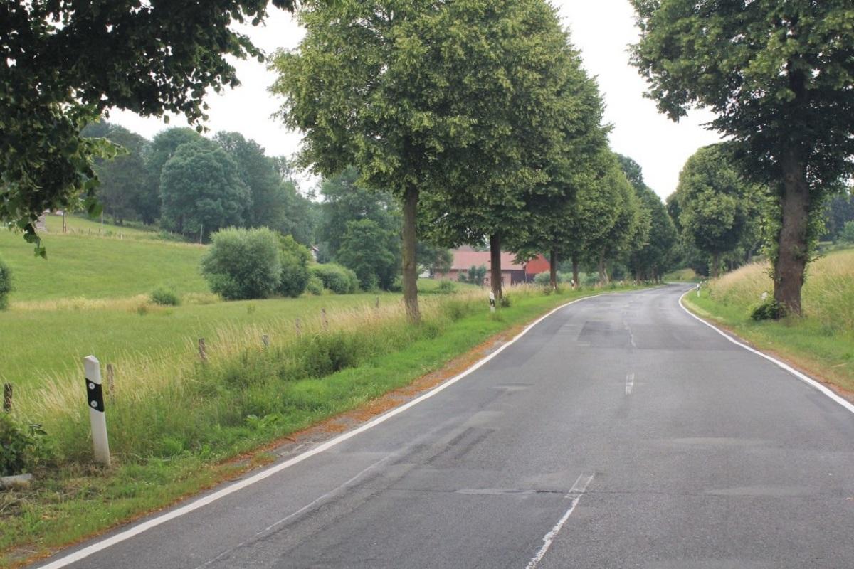 Landwirtschaft Landstraße