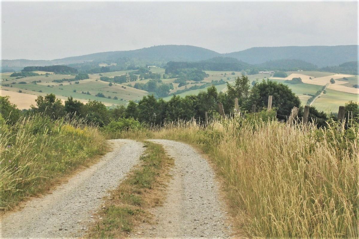Landwirtschaft Landschaft Harz